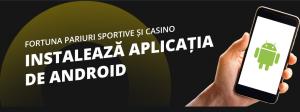 aplicatie fortuna