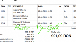 Bilet Vip+Gold cu castig 921 lei