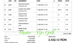 Bilet Vip+Gold cu castig 2432 lei