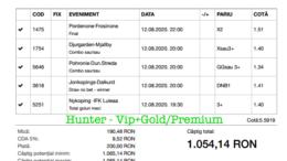 Bilet Vip+Gold/Premium cu castig 1054 lei - 13.08.2020