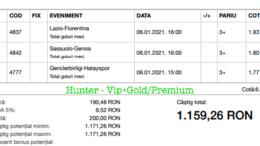 Bilet Vip+Gold/Premium cu castig 1159 lei - 07.01.2021