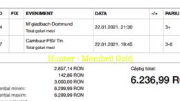 Bilet Vip+Gold/Premium cu castig 849 lei - 23.01.2021