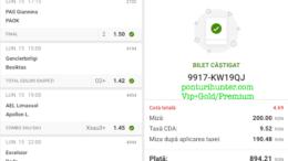 Bilet Vip+Gold/Premium cu castig 894 lei - 16.02.2021