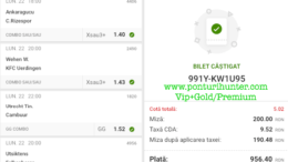 Bilet Vip+Gold/Premium cu castig 956 lei - 23.02.2021