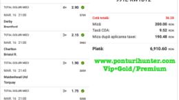 Bilet Vip+Gold/Premium cu castig 6910 lei - 17.03.2021